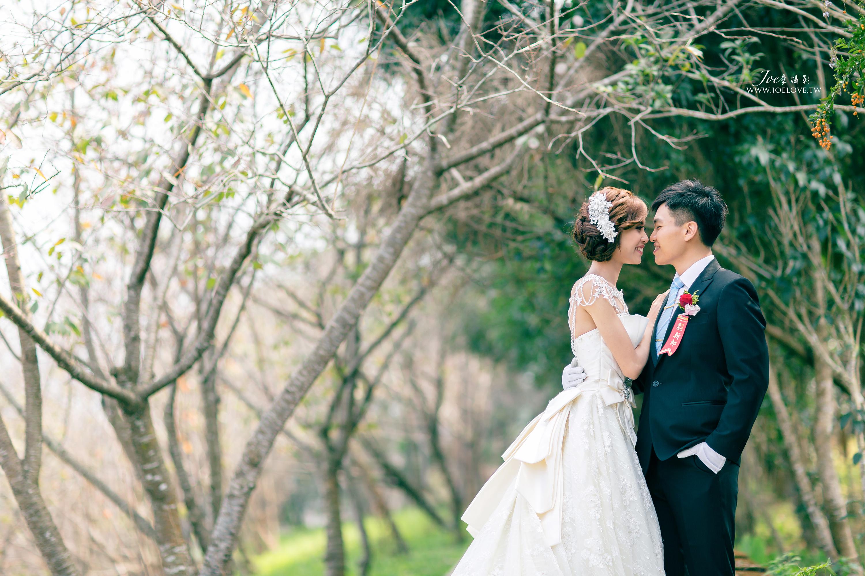 婚禮攝影 天恩素食 鈺頷+芷含 結婚紀錄